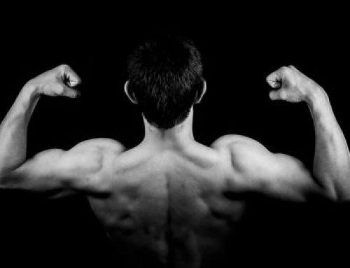 Essentielle råd til muskelopbygning, den ultimative guide for begyndere